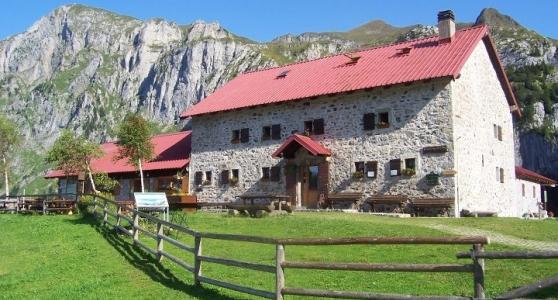 Friuli: contributi per i giovani agricoltori.